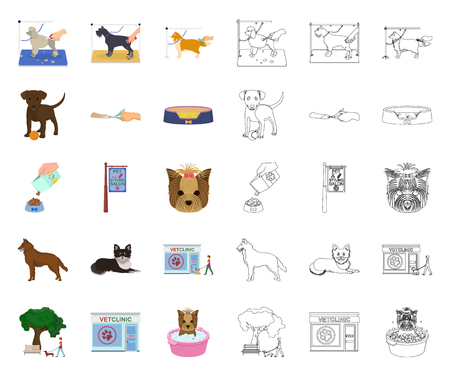 Pet cartoon,outline icons in set collection for design. Care and education vector symbol stock web illustration.