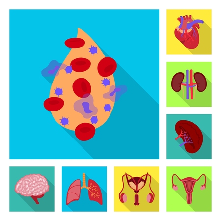 Vector illustration of human and health sign. Collection of human and scientific vector icon for stock.