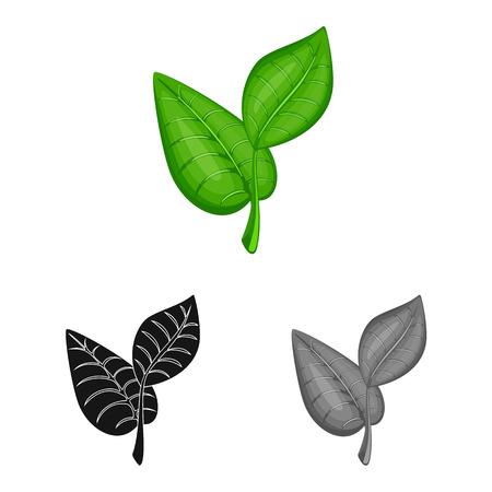 Vector illustration of leaf and plants symbol. Set of leaf and green stock symbol for web. Banque d'images - 120749099