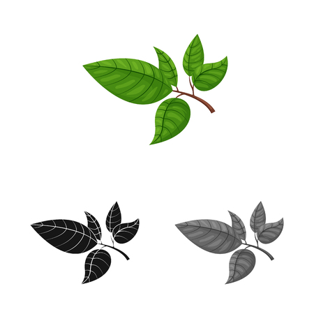 Vector design of tea and leaf symbol. Set of tea and fresh vector icon for stock. Иллюстрация