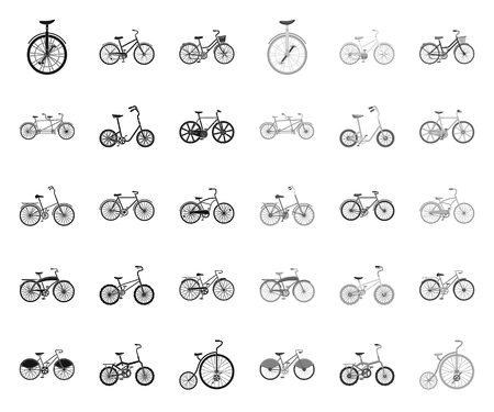 Various bicycles black.mono icons in set collection for design. The type of transport vector symbol stock web illustration.