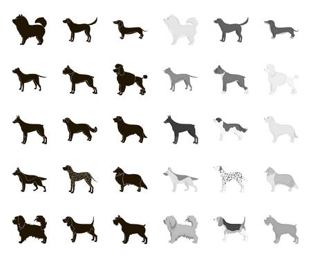 Dog breeds black.mono icons in set collection for design.Dog pet vector symbol stock web illustration.