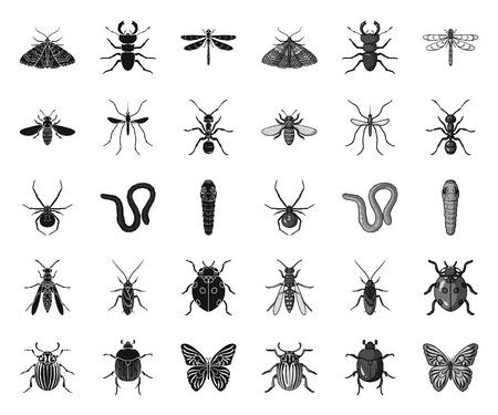 Verschillende soorten insecten black.mono pictogrammen in set collectie voor design. Insect geleedpotige symbool voorraad web vectorillustratie.