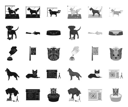Pet black.mono icons in set collection for design. Care and education vector symbol stock web illustration.