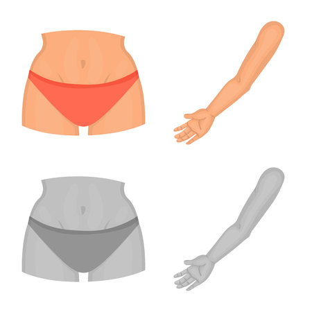 Isolated object of body and part logo. Collection of body and anatomy vector icon for stock. Vettoriali