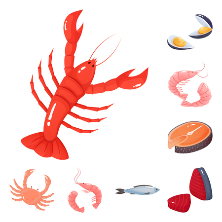 Isolated object of food and sea logo. Set of food and healthy vector icon for stock.