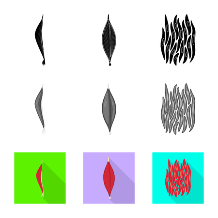 Vector illustration of fiber and muscular . Set of fiber and body  stock symbol for web.