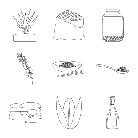 Isolated object of diet and cooking symbol. Set of diet and organic vector icon for stock.