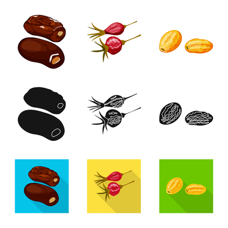 Isolated object of food  and raw  . Collection of food  and nature   stock vector illustration. Illustration