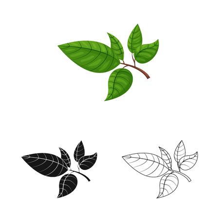 Vector design of tea and leaf symbol. Collection of tea and fresh vector icon for stock.
