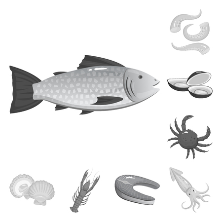 Vector design of seafood and healthy icon. Collection of seafood and ocean stock symbol for web. Illustration