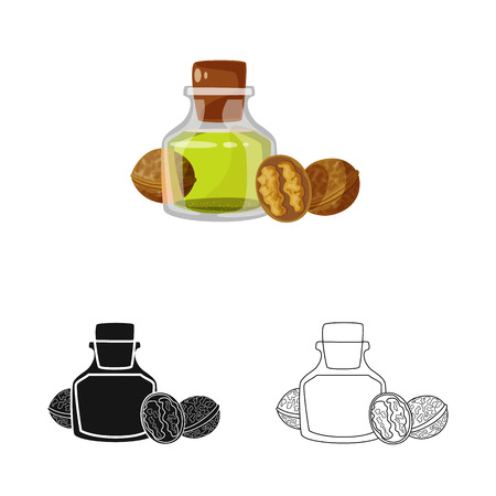 Vector illustration of walnut and food  icon. Set of walnut and cold stock vector illustration.
