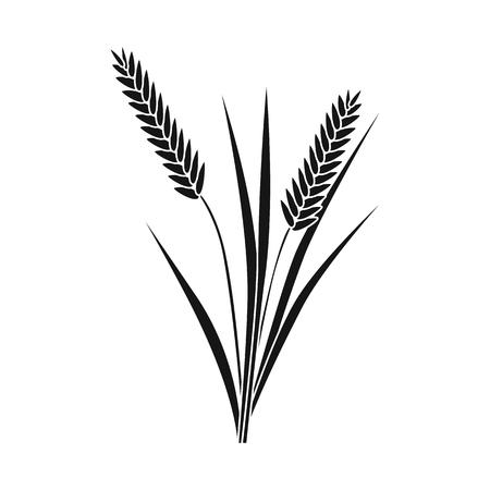 Vector illustration of grain and rice  icon. Collection of grain and garden stock vector illustration. Stock Illustratie