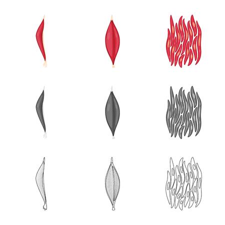 Vector illustration of fiber and muscular. Collection of fiber and body  stock symbol for web.