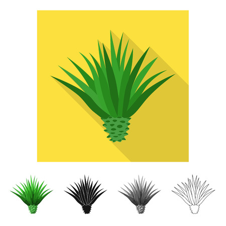 Vector design of agave and plant  sign. Set of agave and cactus vector icon for stock. Illustration