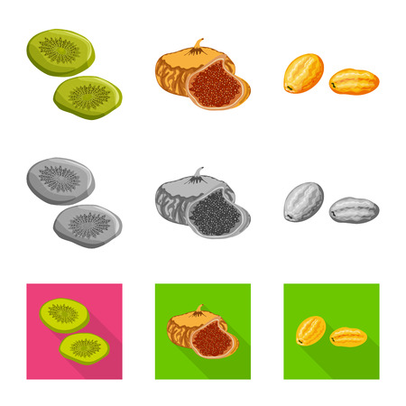 Vector design of food  and raw  symbol. Collection of food  and nature   stock symbol for web.