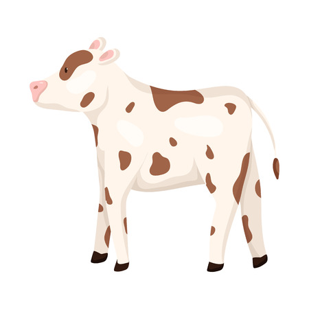 Isolated object of cow and heifer sign. Set of cow and milk stock vector illustration.