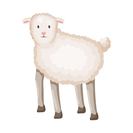 Vector illustration of sheep and anima icon. Set of sheep and lamb stock symbol for web. Illustration
