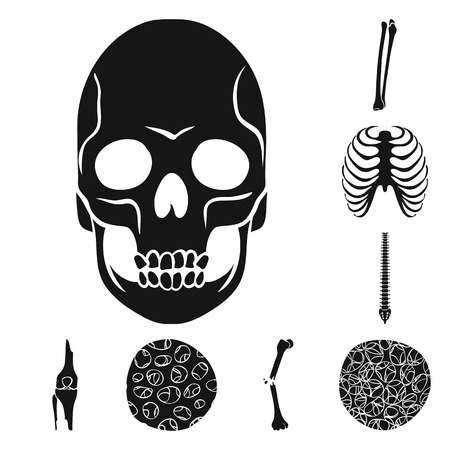 Vector design of biology and medical sign. Collection of biology and skeleton stock symbol for web.