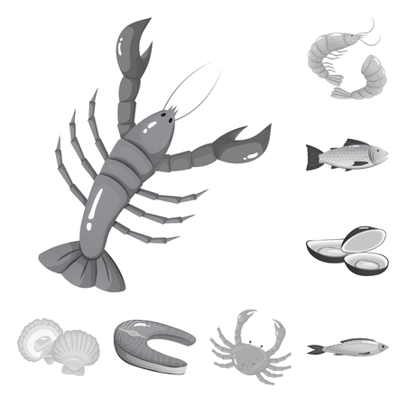 Vector design of seafood and healthy sign. Set of seafood and ocean stock symbol for web. Vettoriali