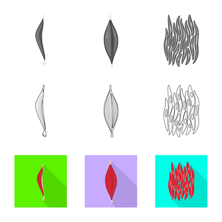 Vector illustration of fiber and muscular . Set of fiber and body  vector icon for stock.