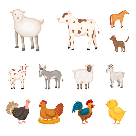 Vector illustration of farm and food symbol. Collection of farm and countryside vector icon for stock.