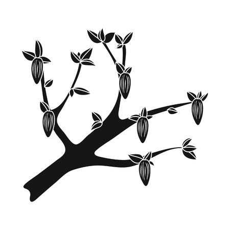 Vector illustration of tree and chocolate  symbol. Collection of tree and plantation vector icon for stock. Standard-Bild - 121380073