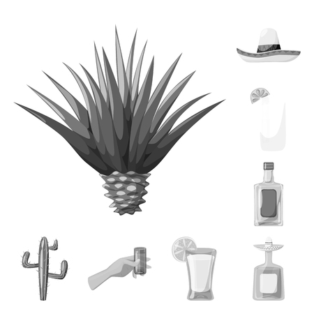 Vector illustration of fajita and fiesta sign. Set of fajita and celebration stock vector illustration. Illustration