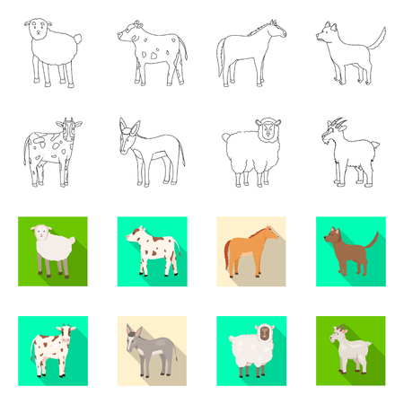 Vector illustration of breeding and kitchen  icon. Set of breeding and organic  stock vector illustration.