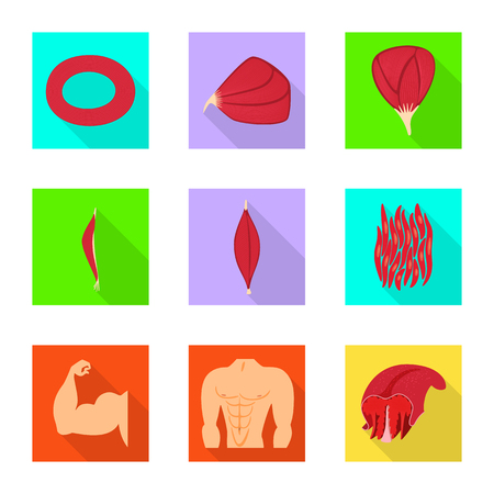 Vector illustration of muscle and cells icon. Set of muscle and anatomy stock symbol for web.