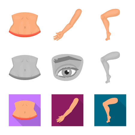 Isolated object of body and part logo. Set of body and anatomy stock vector illustration.