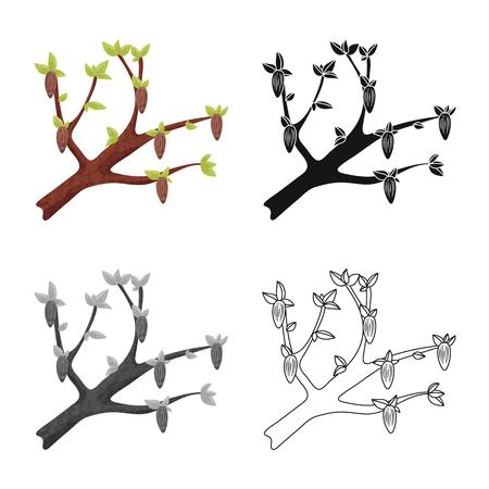 Vector illustration of tree and chocolate  icon. Collection of tree and plantation vector icon for stock. Standard-Bild - 121661709