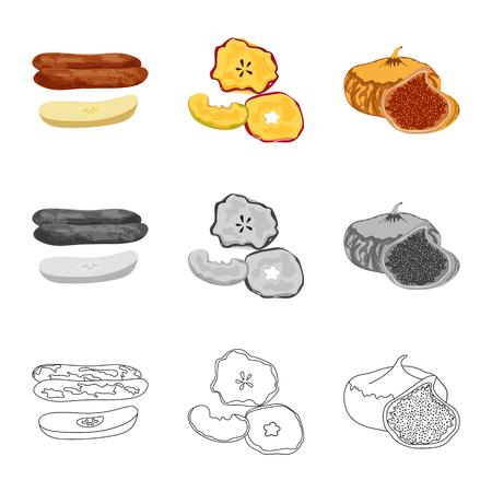 Vektordesign von Lebensmitteln und rohem Symbol. Sammlung von Vektorsymbolen für Lebensmittel und Natur für Lager.