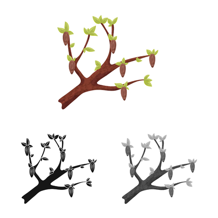 Isolated object of tree and chocolate  logo. Collection of tree and plantation vector icon for stock. Standard-Bild - 121671480
