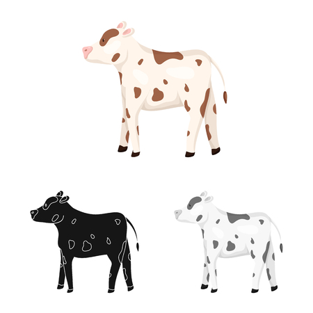 Vector design of cow and heifer sign. Set of cow and milk stock symbol for web.