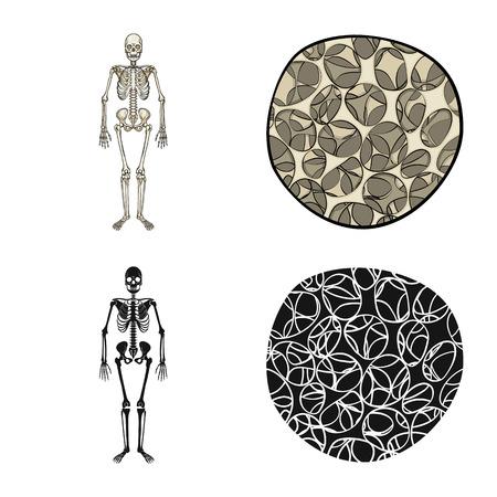 Vector illustration of medicine and clinic logo. Set of medicine and medical stock symbol for web. Illustration