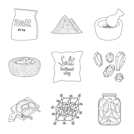 Vector illustration of sodium and mineral. Collection of sodium and kitchen vector icon for stock.