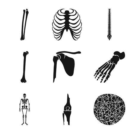 Vector design of biology and medical logo. Collection of biology and skeleton stock vector illustration. Illustration
