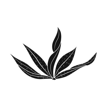 Objet isolé d'algues et logo sain. Ensemble d'icônes vectorielles d'algues et d'aquarium pour le stock.