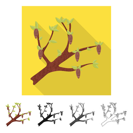 Vector illustration of tree and chocolate  logo. Set of tree and plantation stock symbol for web.
