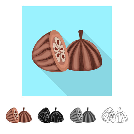 Isolated object of seed and chocolate  sign. Set of seed and fresh  vector icon for stock. Standard-Bild - 122557675