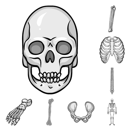 Vector design of biology and medical. Set of biology and skeleton vector icon for stock.