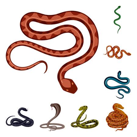 Vector illustration of poison and evil sign. Collection of poison and bite vector icon for stock. Illustration