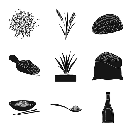 Vector illustration of diet and cooking icon. Set of diet and organic stock vector illustration.