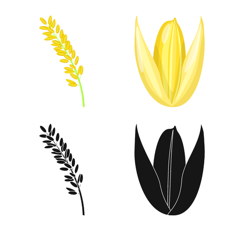 Vector design of crop and ecological logo. Collection of crop and cooking vector icon for stock. Illustration