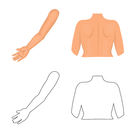 Vector design of body and part sign. Set of body and anatomy stock symbol for web. Banque d'images - 122553997