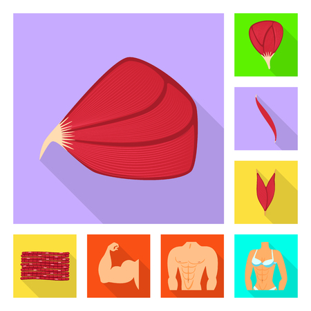 Isolated object of muscle and cells icon. Collection of muscle and anatomy vector icon for stock. Vetores
