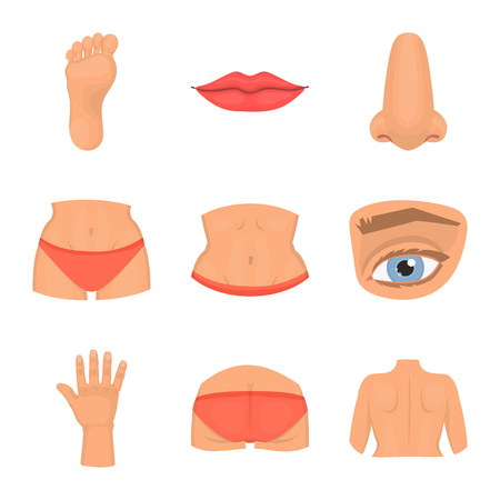 Vector design of body and part logo. Collection of body and anatomy stock vector illustration.
