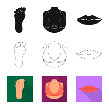 Isolated object of body and part icon. Collection of body and anatomy stock symbol for web. Vettoriali