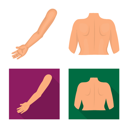Isolated object of body and part sign. Collection of body and anatomy stock symbol for web. Banque d'images - 122484239